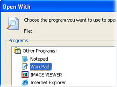 WRK File Extension